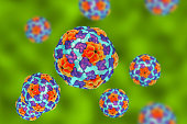 Heptitis A viruses on colorful background, 3D illustration