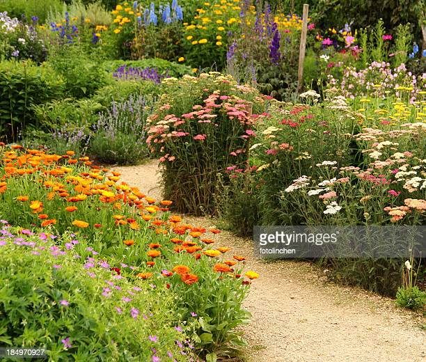 Herb and flower garden