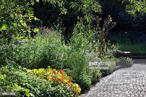 Herb Garden Botanical Gardens Melbourne