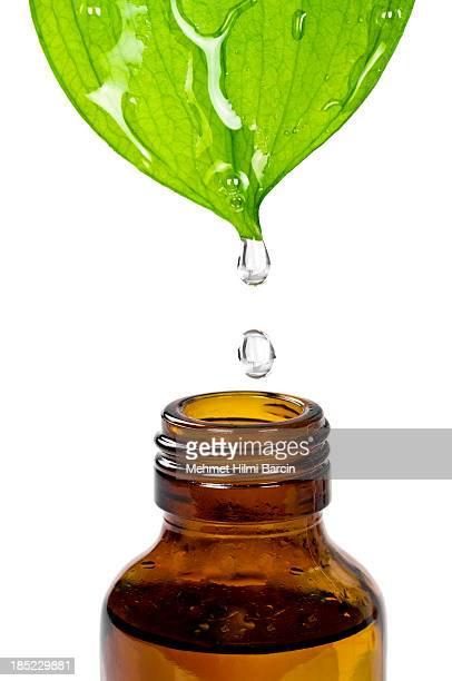 Herbal-Essence
