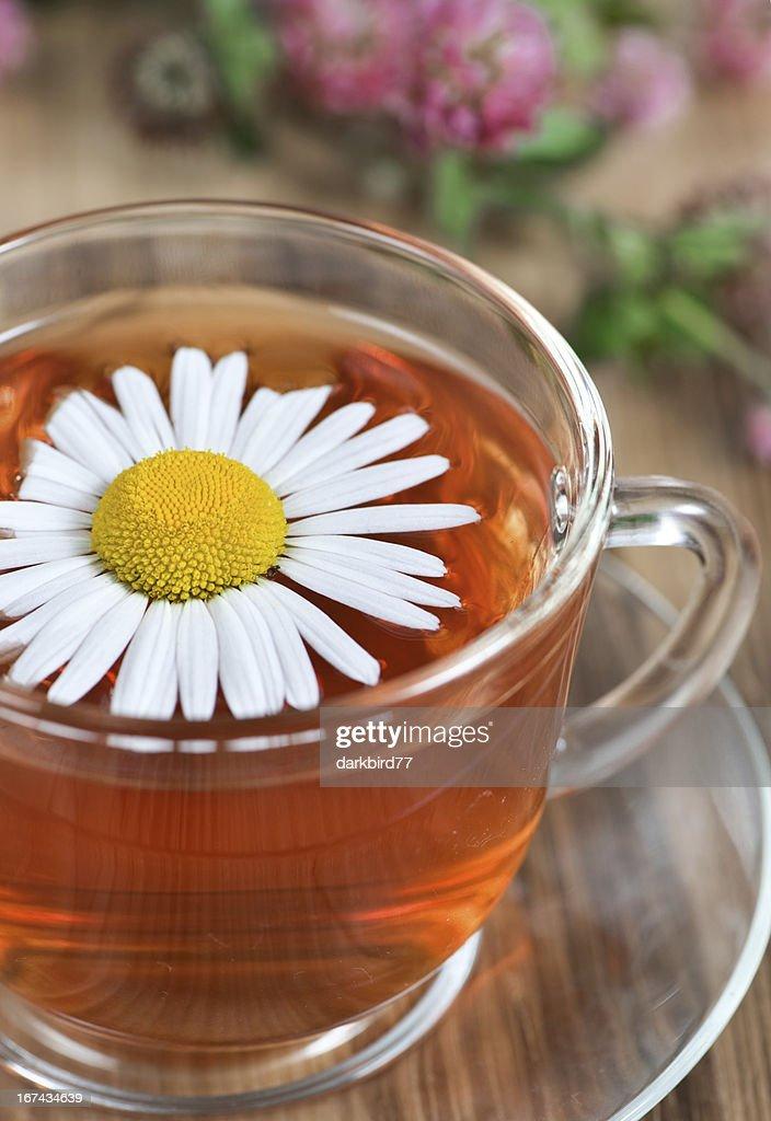 Chá de Ervas : Foto de stock