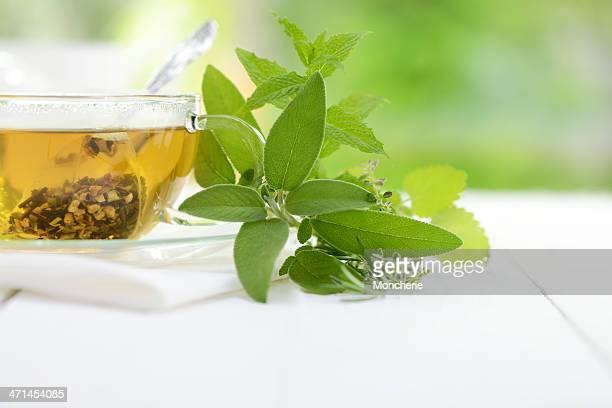 Kräutertee Tea