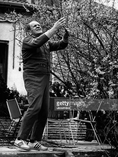 Herberger Josef *28031897Sportler Trainer Fussball D bei Gartenarbeiten zu Hause in WeinheimHohensachsen beschneidet imTrainingsanzug einen Baum oJ