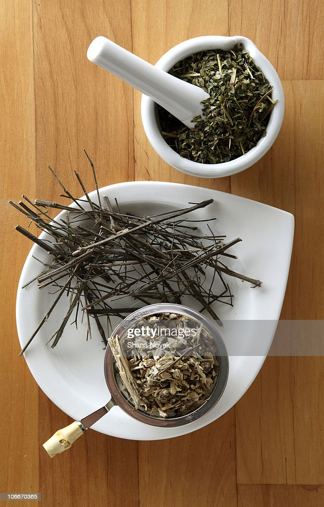 Herbs For a Strong Immune System Boost