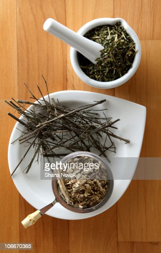 Herbs For A Strong Immune System Boost Stock Photo Getty