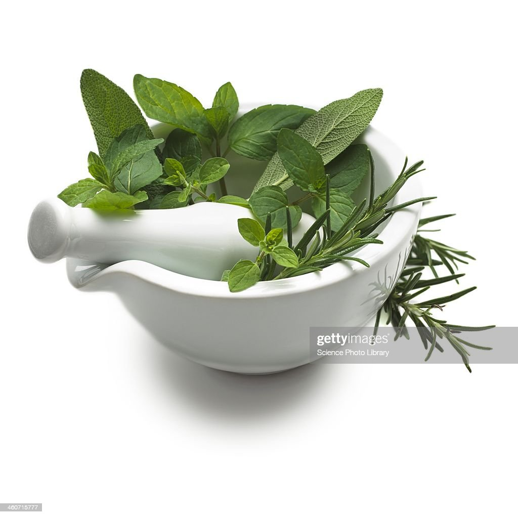 Herbs in a mortar and pestle : Stock Photo