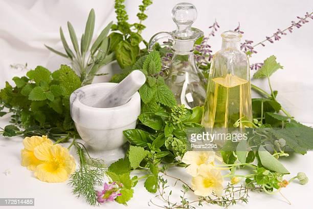 Herbs-3