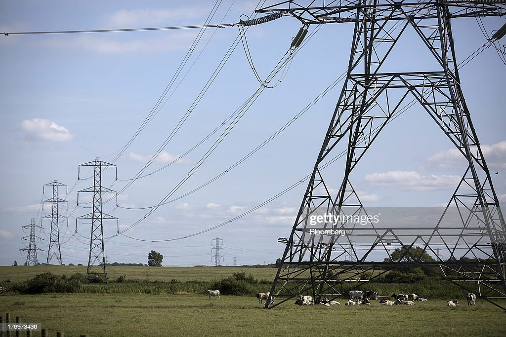 A herd of cows sit in a field beneath an electricity pylon supporting power transmission lines leading away from Electricite de France SA's (EDF) Hinkley Point nuclear power stations near Bridgwater, U.K., on Monday, Aug. 19, 2013. EDF's plans to build two Areva SA reactors at Hinkley Point in southwest England hinge on the price it will get from the U.K. government for the power it would produce. Photographer: Simon Dawson/Bloomberg via Getty Images