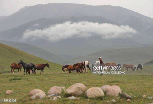 A herdsman grazes horses at a pasture of the SuuSamyr plateau500 meters above the sea level along the ancient Great Silk Road from Bishkek to Osh...