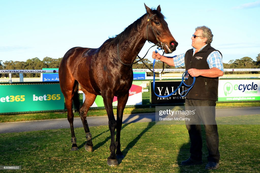 Hero Master after winning the No Fuss Event Hire BM70 Handicap at Bendigo Racecourse on August 13, 2017 in Bendigo, Australia.