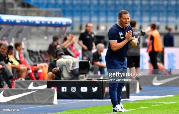 Hertha Berlin's head coach Pal Dardai reacts during the German First division Bundesliga football match Hertha Berlin vs VfB Stuttgart in Berlin on...
