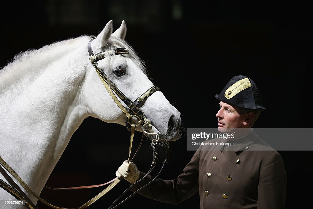 Herwig Radnetter, of The Spanish Riding School of Vienna, and his horse Pluto Sabata, pose during a photocall at The National Indoor Arena on November 14, 2012 in Birmingham, England. The famous Spanish Riding School of Vienna's White Lipizzaner Stallions are performing with their skilled riders as part of their UK tour. Lee Pearson who has won 28 paralympic medals will also perform to show that disabled riders can also work in harmony with horses.