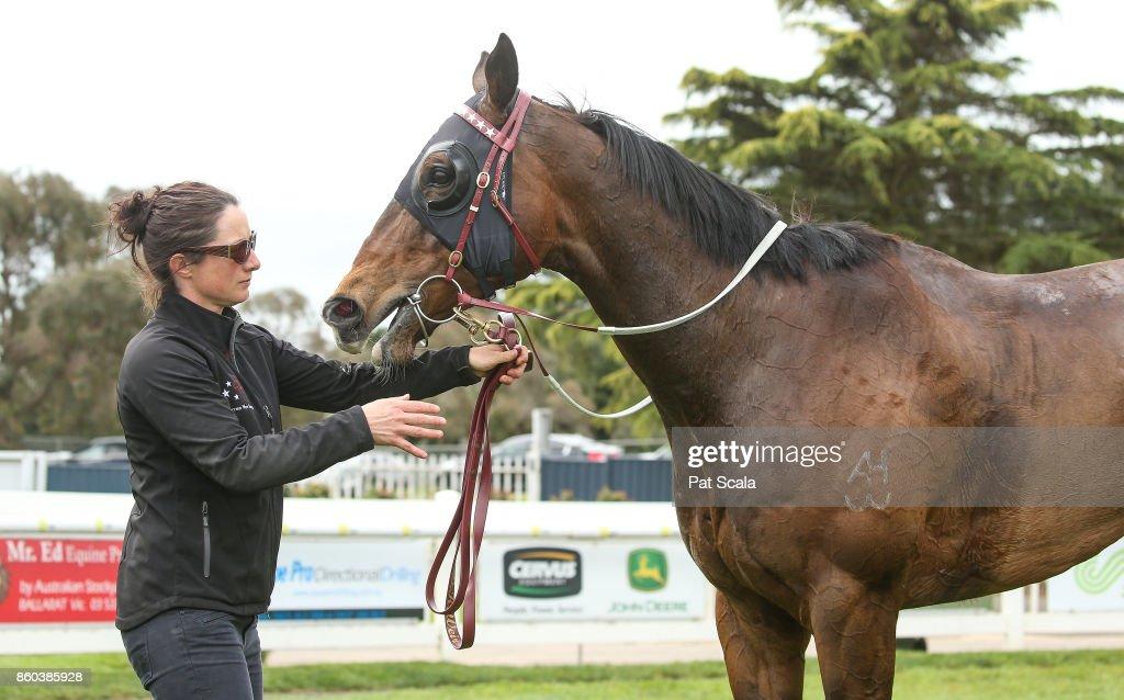 He's a Moral after winning Hygain Winner Choice BM64 Handicap,at Sportsbet-Ballarat Racecourse on October 12, 2017 in Ballarat, Australia.