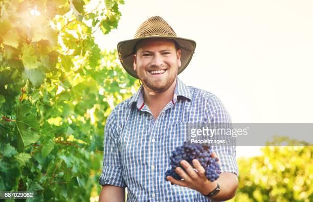 He's doing a grape job!
