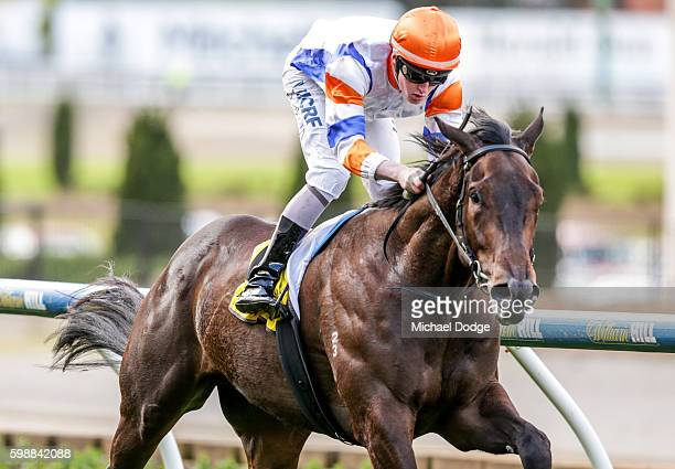 Hey Doc ridden by Dylan Dunn wins Quest Moonee Valley Handicap at Moonee Valley Racecourse on September 03 2016 in Moonee Ponds Australia