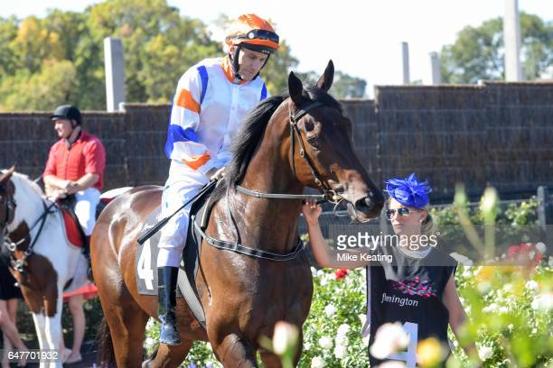 Hey Doc ridden by Luke Currie in the mounting yard before the Australian Guineas at Flemington Racecourse on March 04 2017 in Flemington Australia