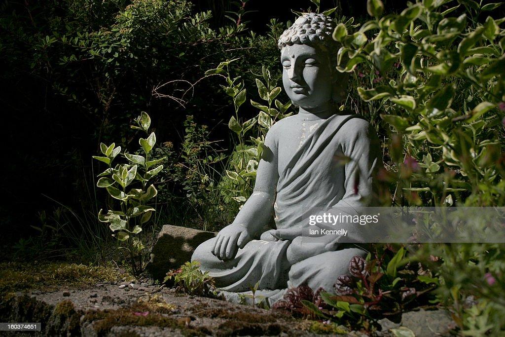 Hidden Buddha : Stock Photo