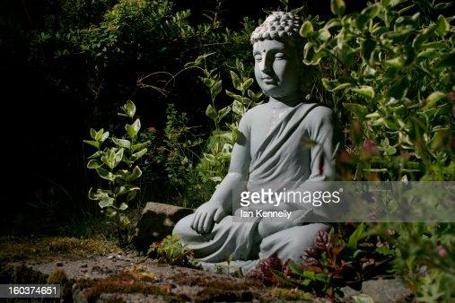 Hidden Buddha : Bildbanksbilder