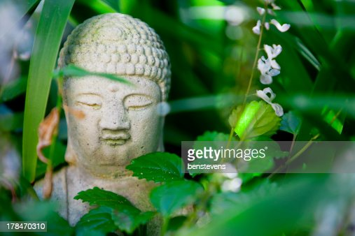 Hidden Buddha Statue in the Garden : Stock Photo