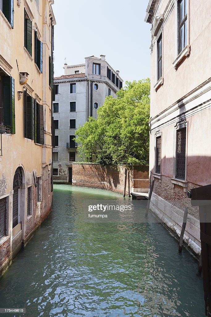Hidden Garden In Venice
