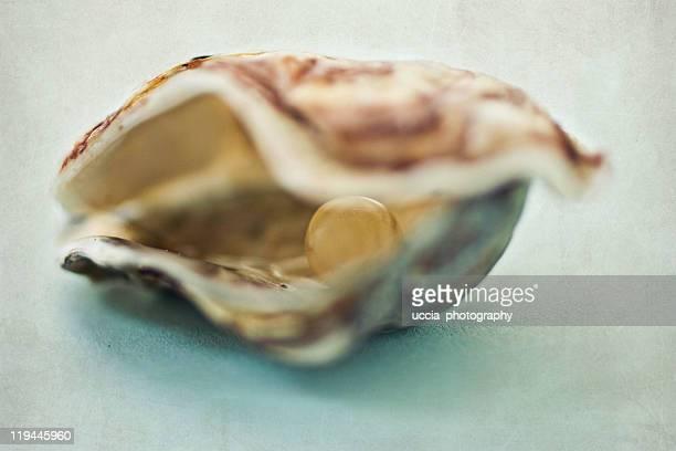 Hidden life of joy in treasure chest of pearls