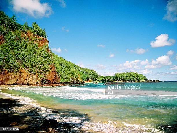 隠れたマウイ、ハワイパシフィックオーシャンビーチの景色