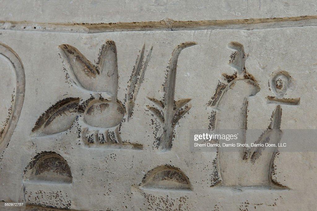 Hieroglyphics : Stock Photo
