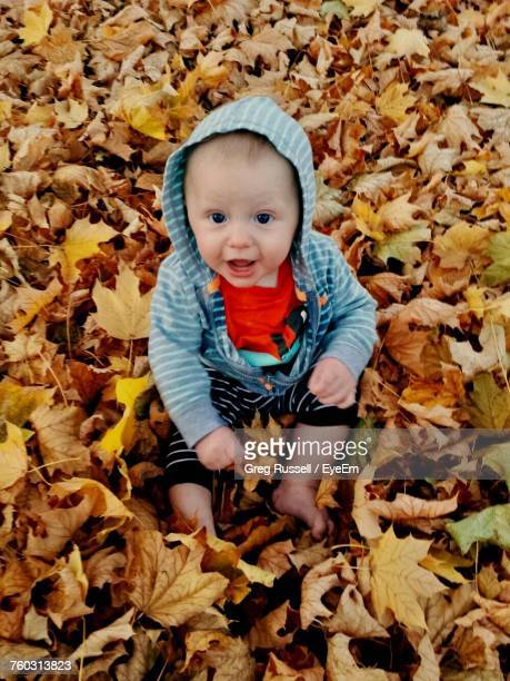 High Angle Portrait Of Baby Boy Sitting On Autumn Leaves