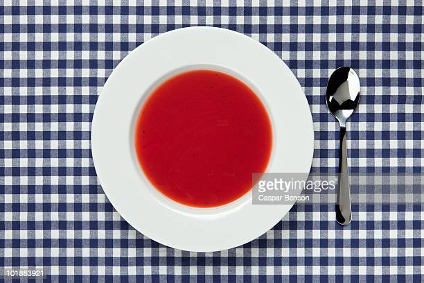 High angle view of a bowl of tomato soup