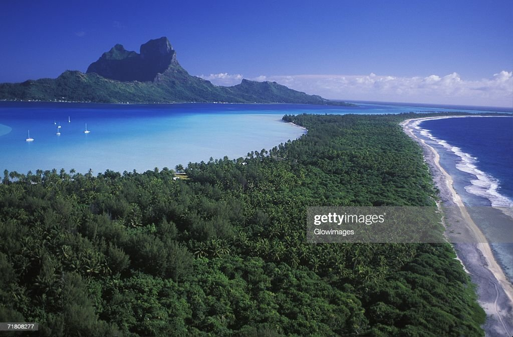 High angle view of a forest along the sea, Hawaii, USA