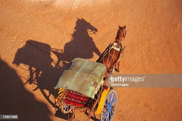 High angle view of a horse cart, Bagan, Myanmar
