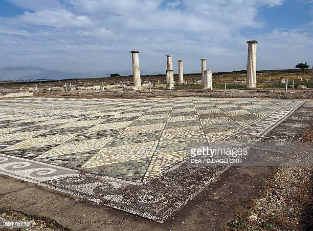 High angle view of a mosaic pattern on the floor Pella Macedonia Greece