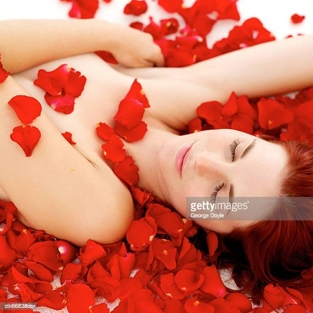 high angle view of a woman lying on her back covered with red rose petals