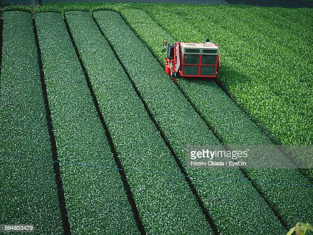 High Angle View Of Agricultural Machinery On Tea Field