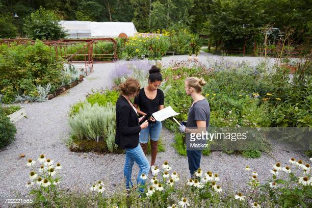High angle view of architects communicating at community garden
