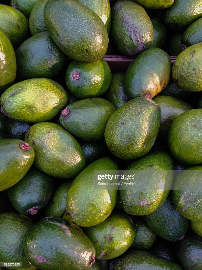 the avacado view The final weekly word watch of 2017 john kelly rounds-up with some lexical nuggets on the crossushi, cocktail avocado, mcvegan, selfitis,.