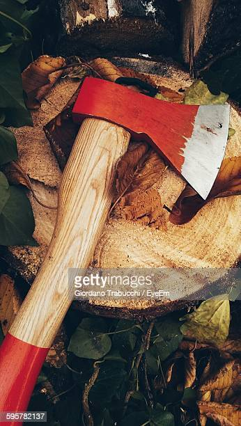 High Angle View Of Axe On Tree Stump In Forest