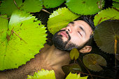 High angle view of bearded young man floating among lily pads, eyes closed, Taiba, Ceara, Brazil