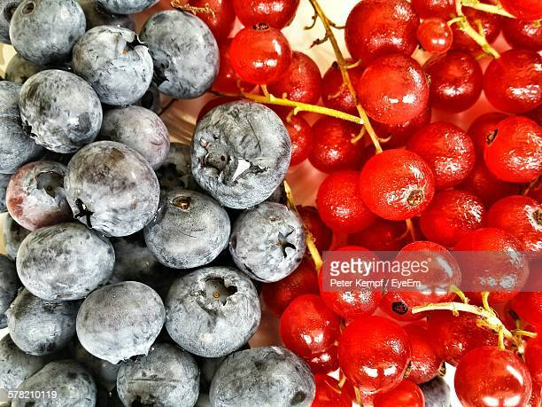 High Angle View Of Blueberries And Red Currants