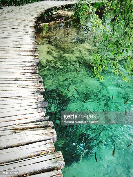 High Angle View Of Boardwalk By Fish Swimming In Lake