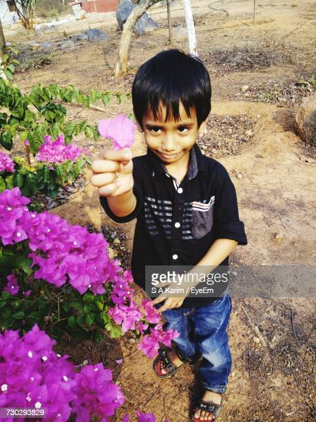 High Angle View Of Boy Holding Pink Bougainvilleas While Standing On Field