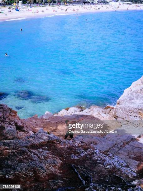 High Angle View Of Boy Standing On Rocky Beach