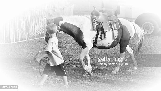 High Angle View Of Boy With Pony On Field