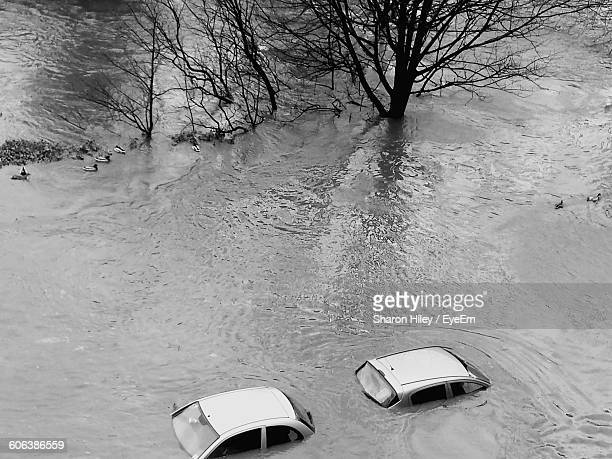 High Angle View Of Cars And Bare Trees Drowning In Flood