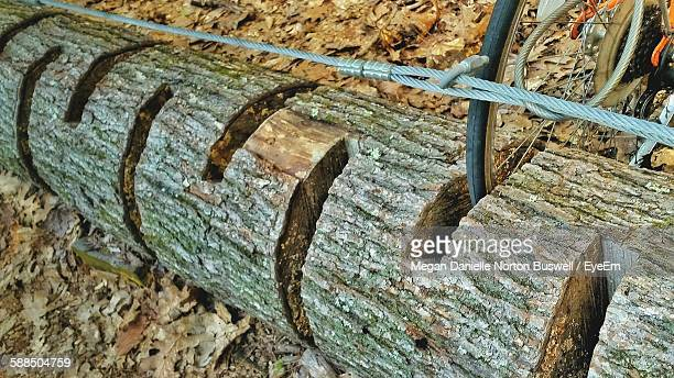 High Angle View Of Cropped Bicycle Locked On Wooden Rack