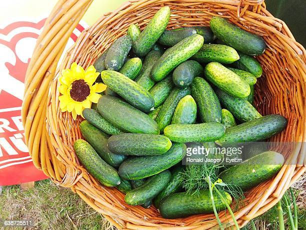 High Angle View Of Cucumbers In Wicker Basket On Field