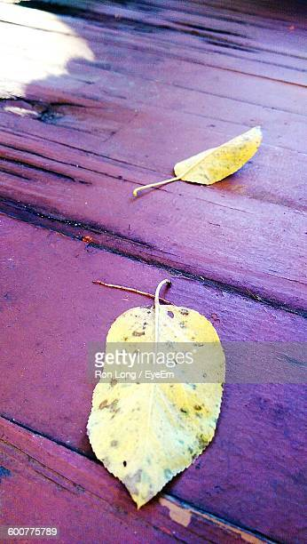 High Angle View Of Fallen Leaves On Wooden Table