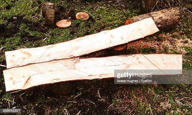 High Angle View Of Firewood On Field