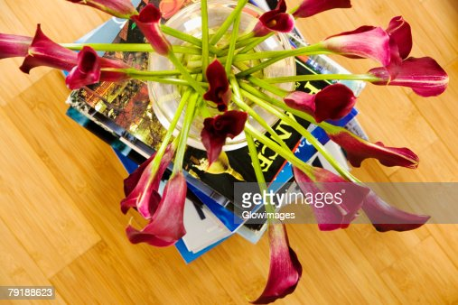 High angle view of flowers in a vase on a stack of books : Stock Photo