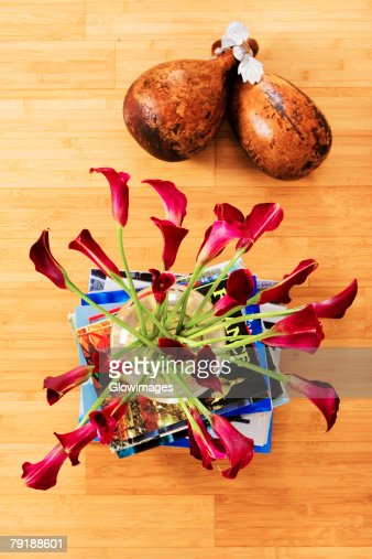 High angle view of flowers in a vase on a stack of books with dried gourds : Stock Photo